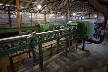 Заготовка древесины - фото 12